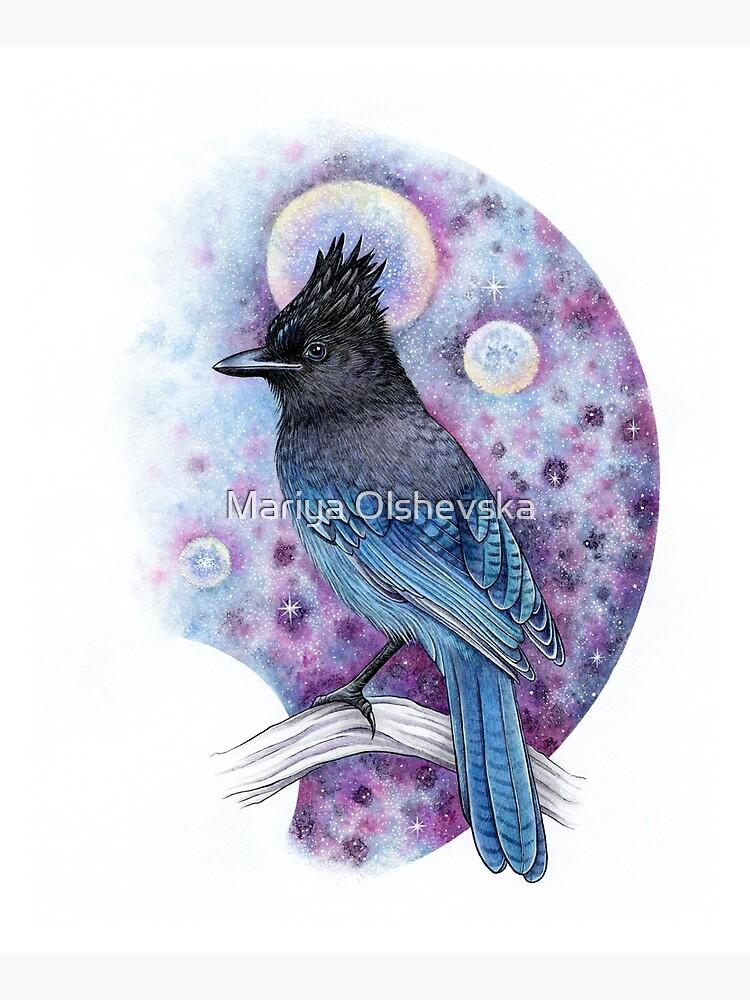 Stellar Jay by OzureFlame