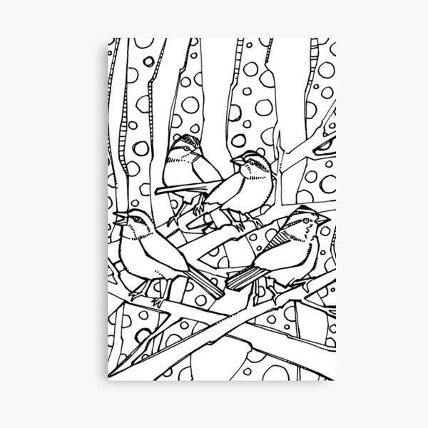 White-throated Sparrows, Coloring Book Page Canvas Print