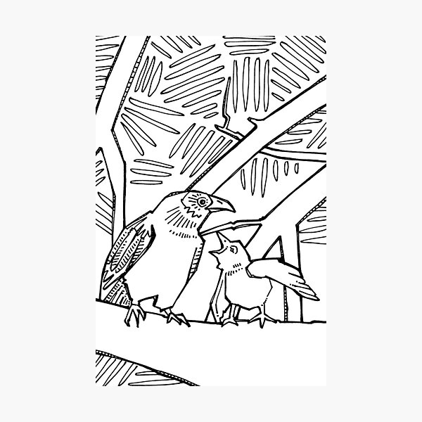 American Crow, Coloring Book Page Photographic Print