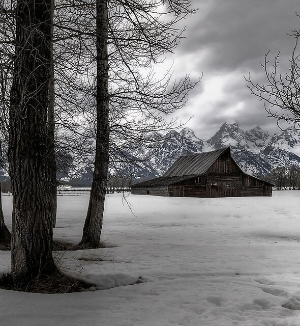 Wintering Wyoming by Robert Mullner