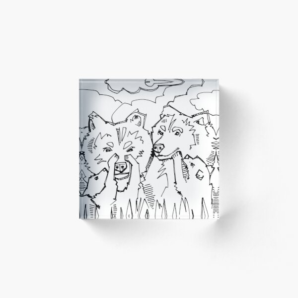 Grizzly Bear, Coloring Book Image Acrylic Block