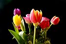 Spring Bouquet  by Sally Green