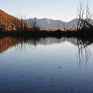 New Zealand Tarn by Bryan Cossart