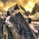 Wild Flight Alaska  by Bruce Taylor