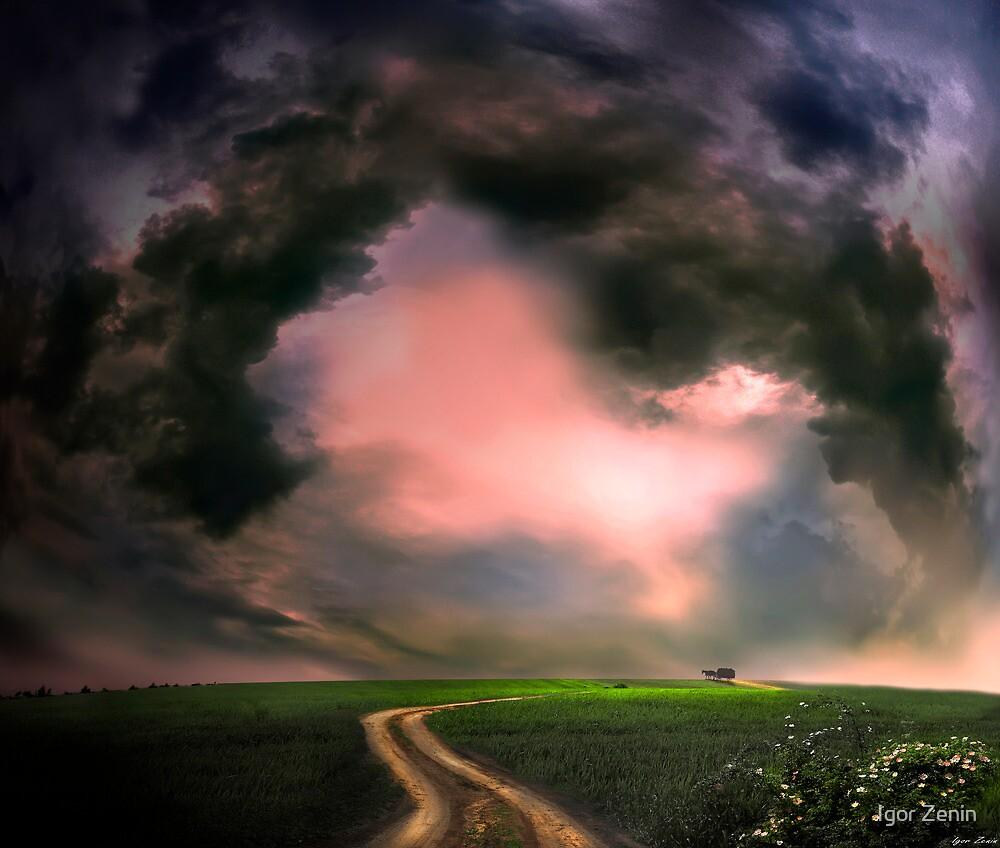 Leaving by Igor Zenin