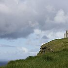 Castle on the Cliffs by Erin K Casey
