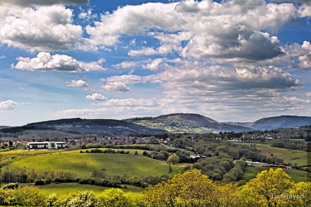 Sun Dappled Hills by TomRaven