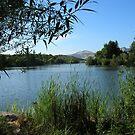 Spring Lake, Santa Rosa, CA by MsFit1958