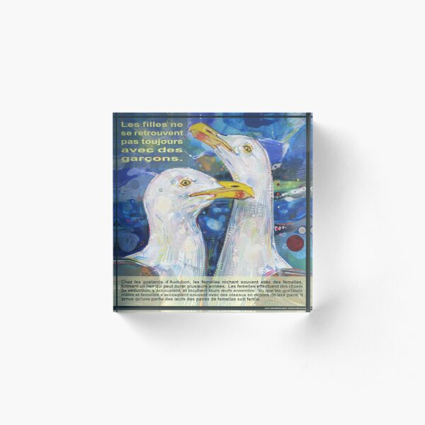 Léger comme un Oiseau (Le Goéland d'Audubon) Acrylic Block