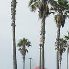 Huntington Beach pier by SizzleandZoom
