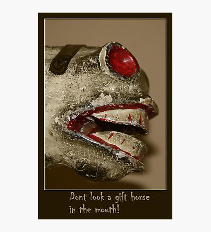 Straight from the Horse's Mouth! Photographic Print