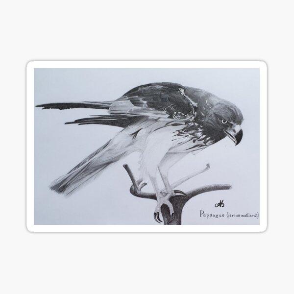 Papangue, oiseau de proie Sticker