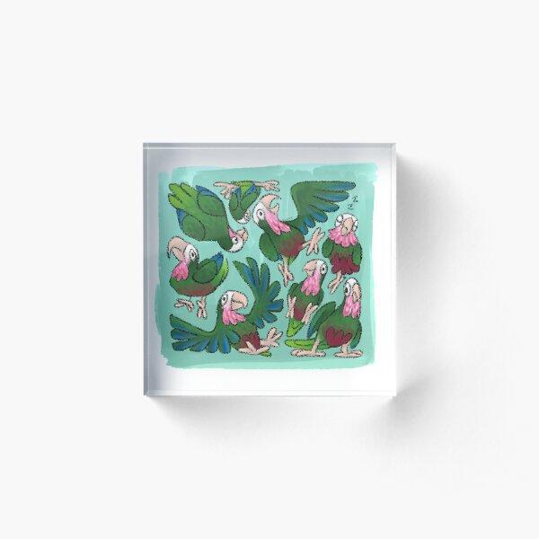 Cuban Amazon Cube Acrylic Block