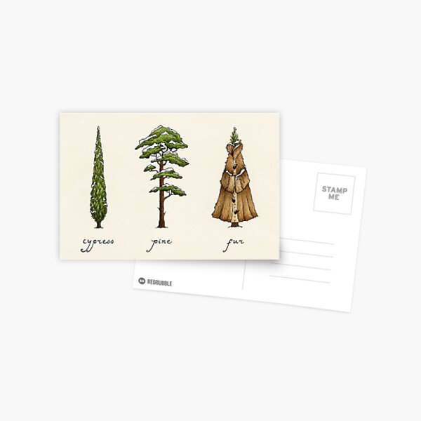 Fur Tree Postcard