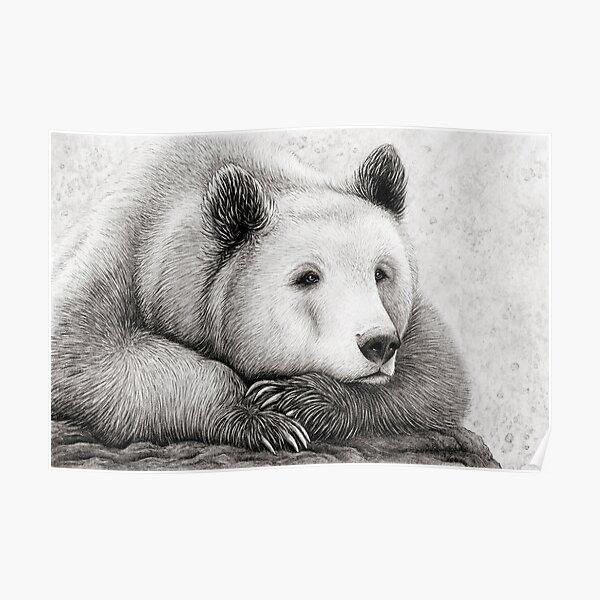 Brooding Bear Poster