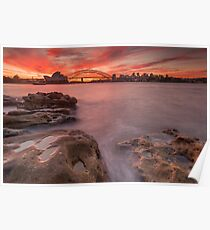 Sydney Harbour at sunset Poster