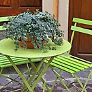 Green chairs and table with plant in pot by Sami Sarkis