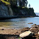 Vancouver - Stanley Park - Siwash Rock by rsangsterkelly