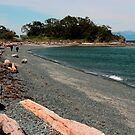 Nanaimo - Pipers Lagoon - The Beach by rsangsterkelly
