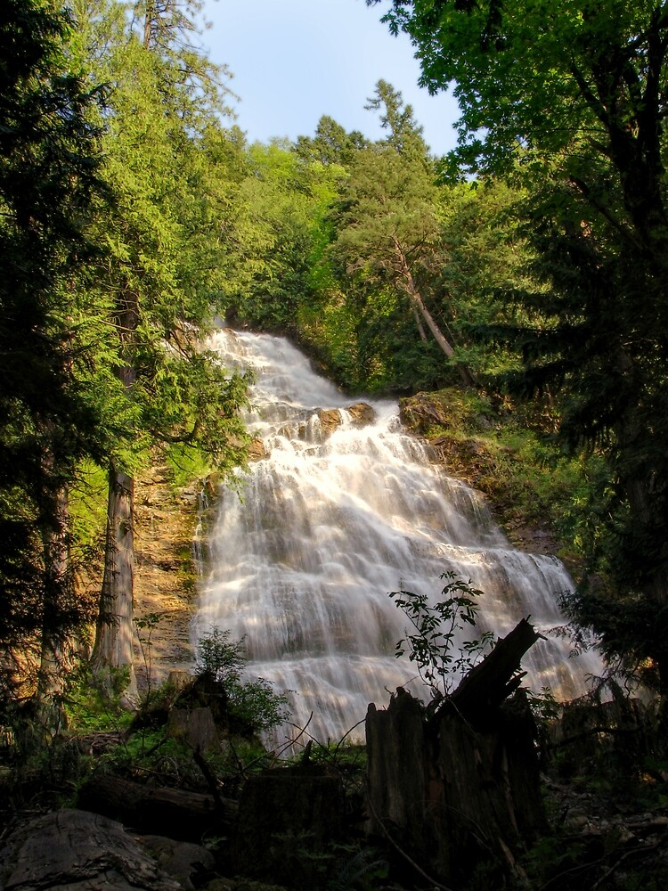 Bridal Falls by Tracy Friesen