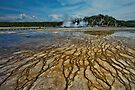 Yellowstone Blood Vessels by Dan Mihai