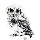 Pretty Little Owl by IsabelSalvador