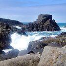 Antrim Coastline by Gerry  Temple