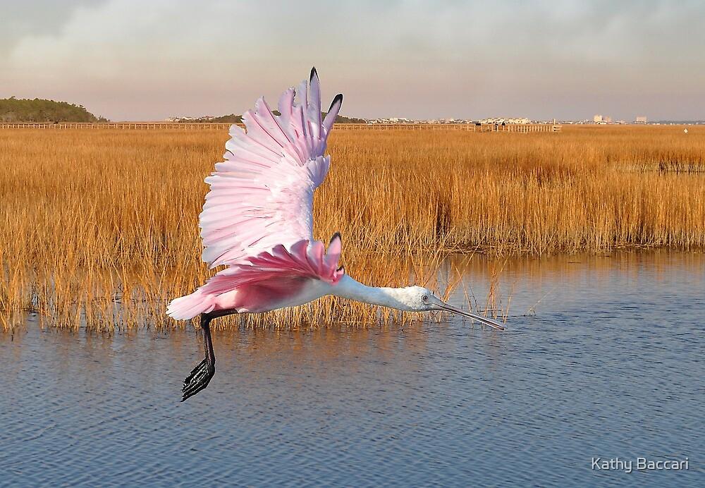 Roseate Spoonbill Flying Through The Salt Marsh by Kathy Baccari