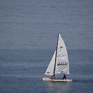 We are sailing - Navegamos por Vela by PtoVallartaMex