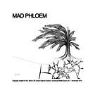 Mad Phloem (originally created for Ms. Sarver, 5th Grade, Gowanda Middle School) by blehdi