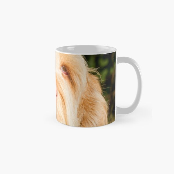 Lonesome for you Spinone Classic Mug