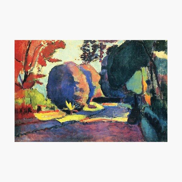 Henri Matisse | The Luxembourg Gardens Photographic Print