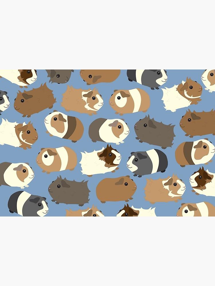Cute Guinea Pigs  by Psitta