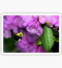 Flying Bumble Bee Collection Pollen Sticker