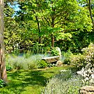 The Magical Garden by Monica M. Scanlan
