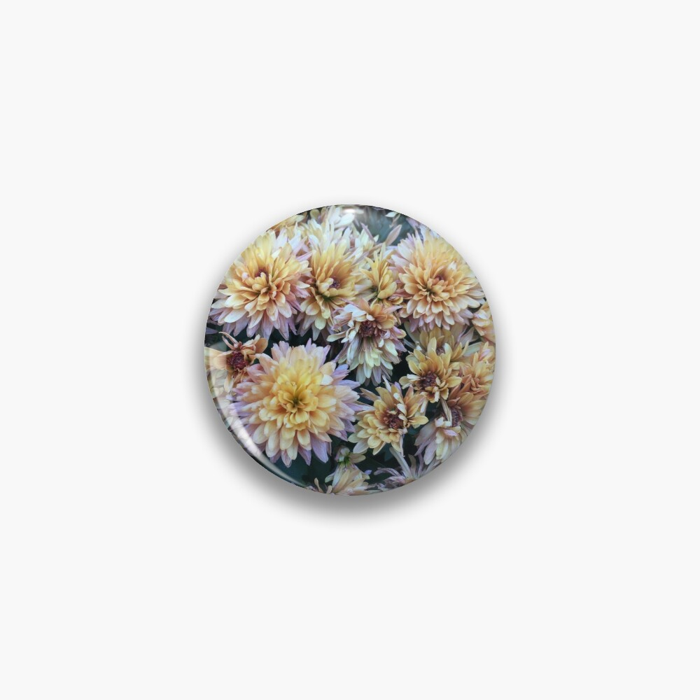 Gift for Gardener - Mumsified - Light Yellow and Pink Mums Pin
