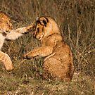 Judo chop! by arodericks