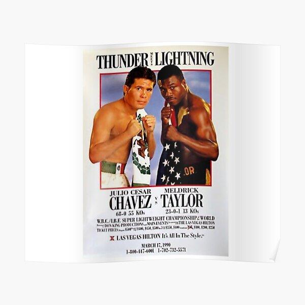 Chavez v Taylor  Poster