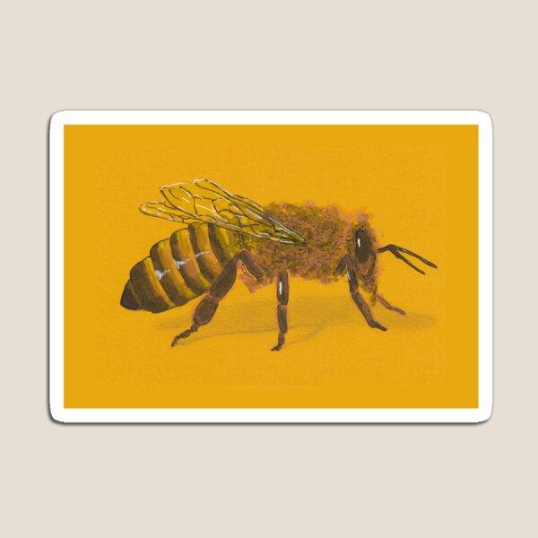 Honeybee Magnet