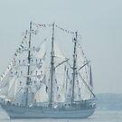 Tall Ships Parade, Fleet Week, New York Harbor, New York City, May 23, 2012 by lenspiro