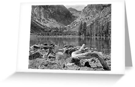 Parker Lake, Ansel Adams Wilderness Area, California by Pete Paul