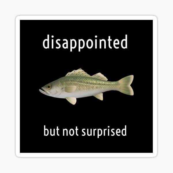 jokes hilarious funny animal crossing memes