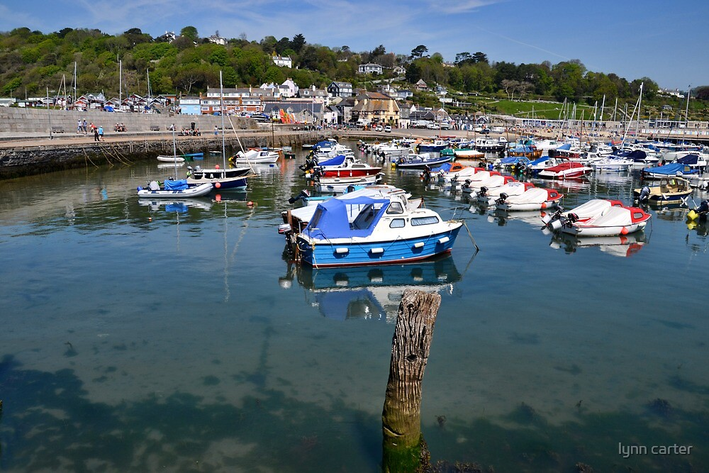 Harbour View  by lynn carter