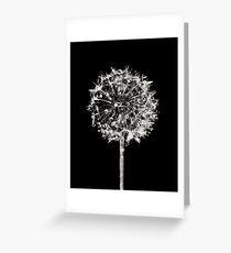 Monochrome Dandelion Greeting Card