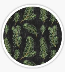 Watercolor pine branches pattern on black background Sticker