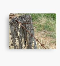 Old Barbed Wire Fence Canvas Print