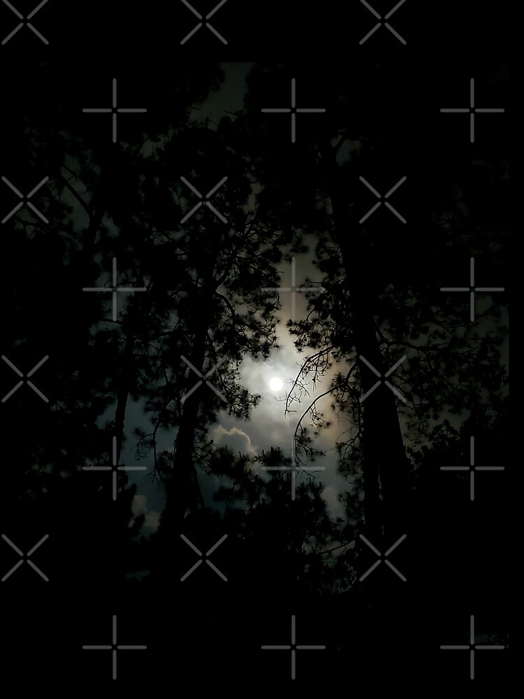 Full moon in Texas  by dreamie09