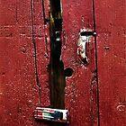 Battered Barn Door by RC deWinter
