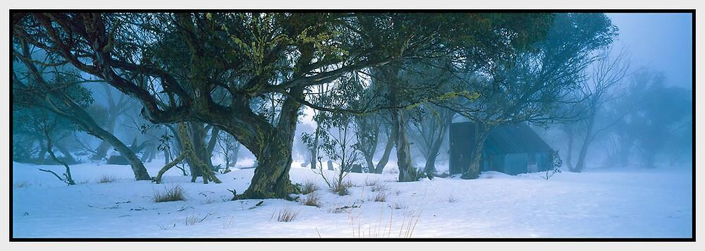 Winter's Mystery, Dinner Plain VIC by Chris Munn