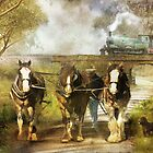 Under Our Own Steam by Trudi's Images